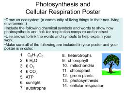 Board Game: Photosynthesis & Cellular Respiration
