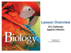 Lesson Overview 35.2 Defenses Against Infection Defenses Against Infection