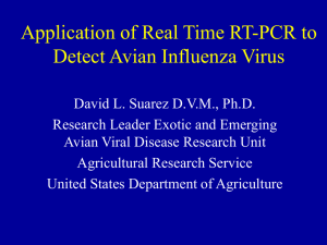 Application of Real Time RT-PCR to Detect Avian Influenza Virus