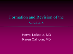 Formation and Revision of the Cicatrix Herve' LeBoeuf, MD Karen Calhoun, MD