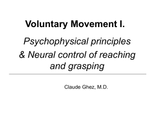 Voluntary Movement I. Psychophysical principles & Neural control of reaching and grasping