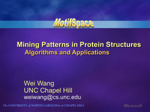 Mining Patterns in Protein Structures Wei Wang UNC Chapel Hill Algorithms and Applications