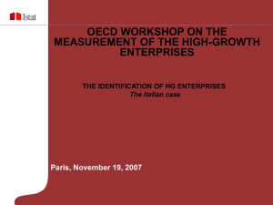 OECD WORKSHOP ON THE MEASUREMENT OF THE HIGH-GROWTH ENTERPRISES Paris, November 19, 2007