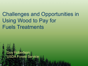 Challenges and Opportunities in Using Wood to Pay for Fuels Treatments Guy Robertson