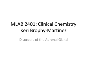 MLAB 2401: Clinical Chemistry Keri Brophy-Martinez Disorders of the Adrenal Gland