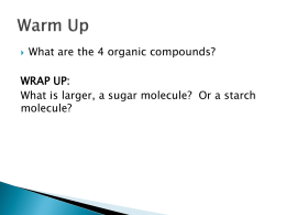 What are the 4 organic compounds? WRAP UP: molecule?