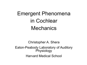Emergent Phenomena in Cochlear Mechanics Christopher A. Shera
