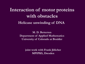 Interaction of  motor proteins with obstacles Helicase unwinding of  DNA