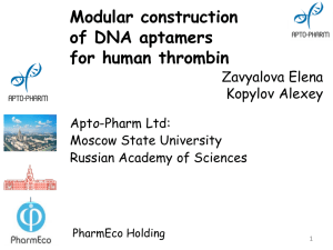 Modular construction of DNA aptamers for human thrombin Zavyalova Elena