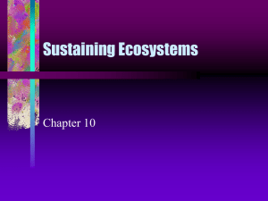 Sustaining Ecosystems Chapter 10