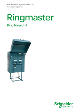 Ring Main Unit - Schneider Electric