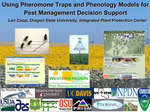 Degree Day Models and Pheromone Traps
