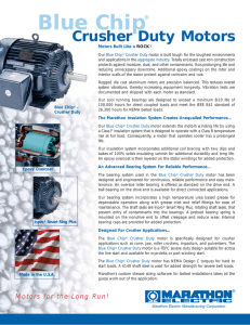 Crusher Duty Motors Brochure