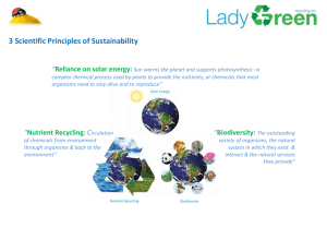 3 Scientific Principles of Sustainability