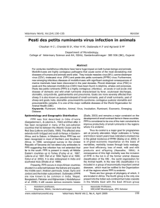 Pesti des petits ruminants virus infection in animals