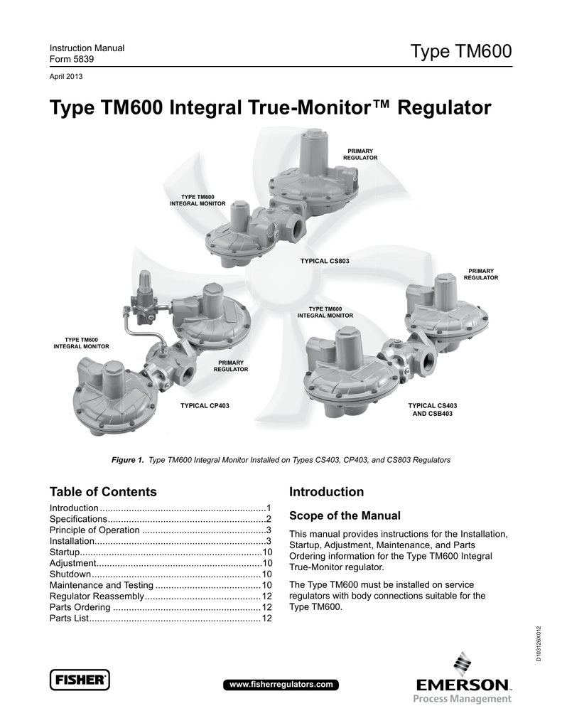 Type TM600 Integral True-Monitor™ Regulator