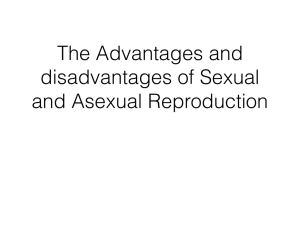 Advantages/ Disadvantages of Sexual/Asexual reproduction