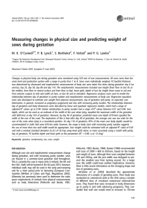Measuring changes in physical size and predicting weight of sows