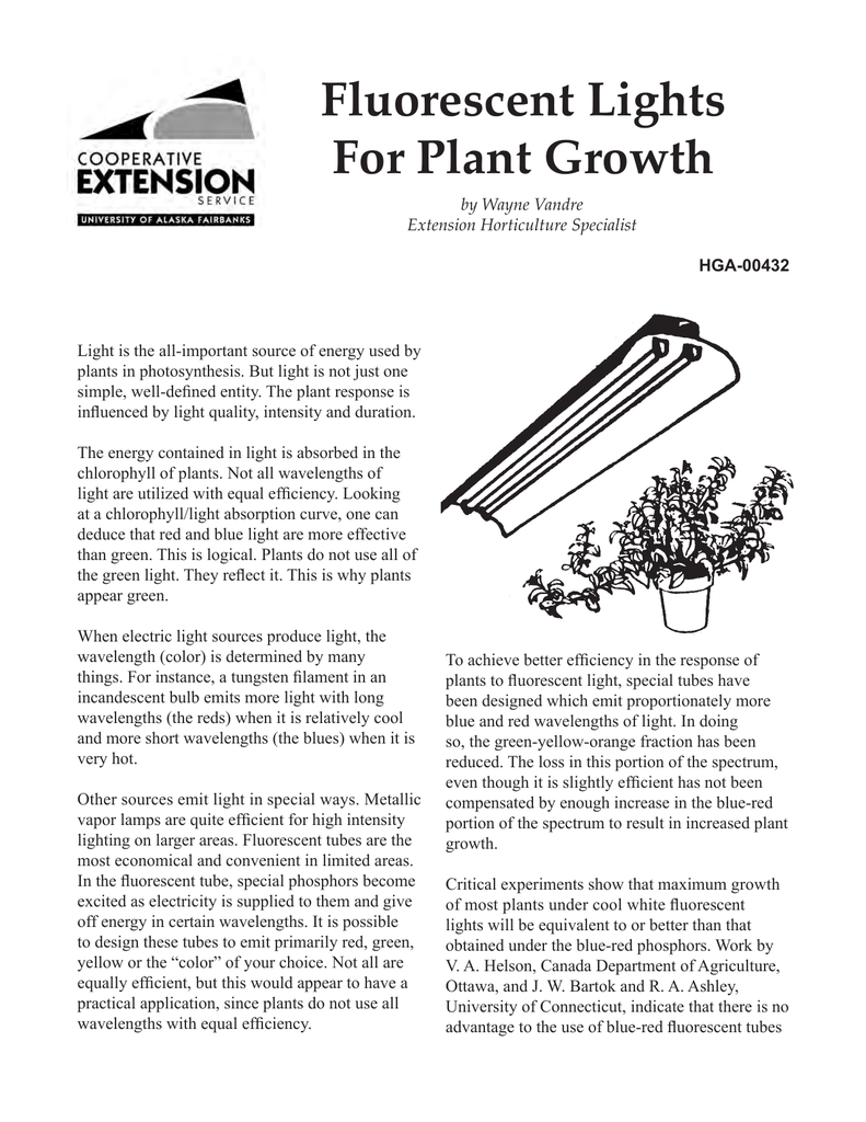 Fluorescent Lights For Plant Growth
