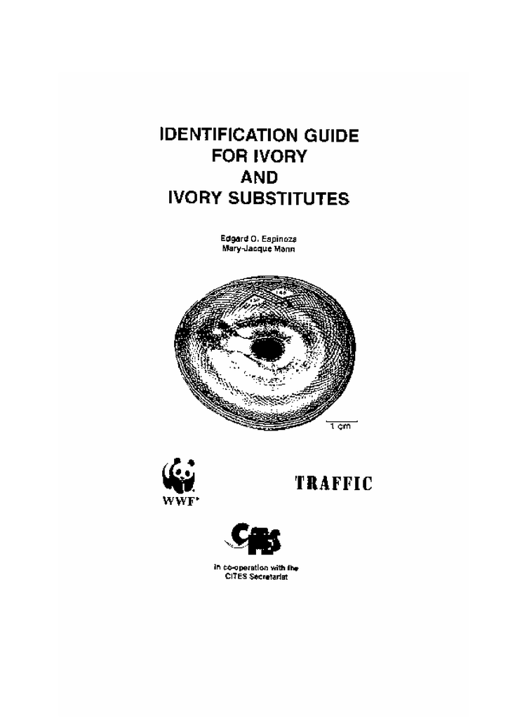 ivory identification guide