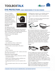 Eye Protection - SWR Institute
