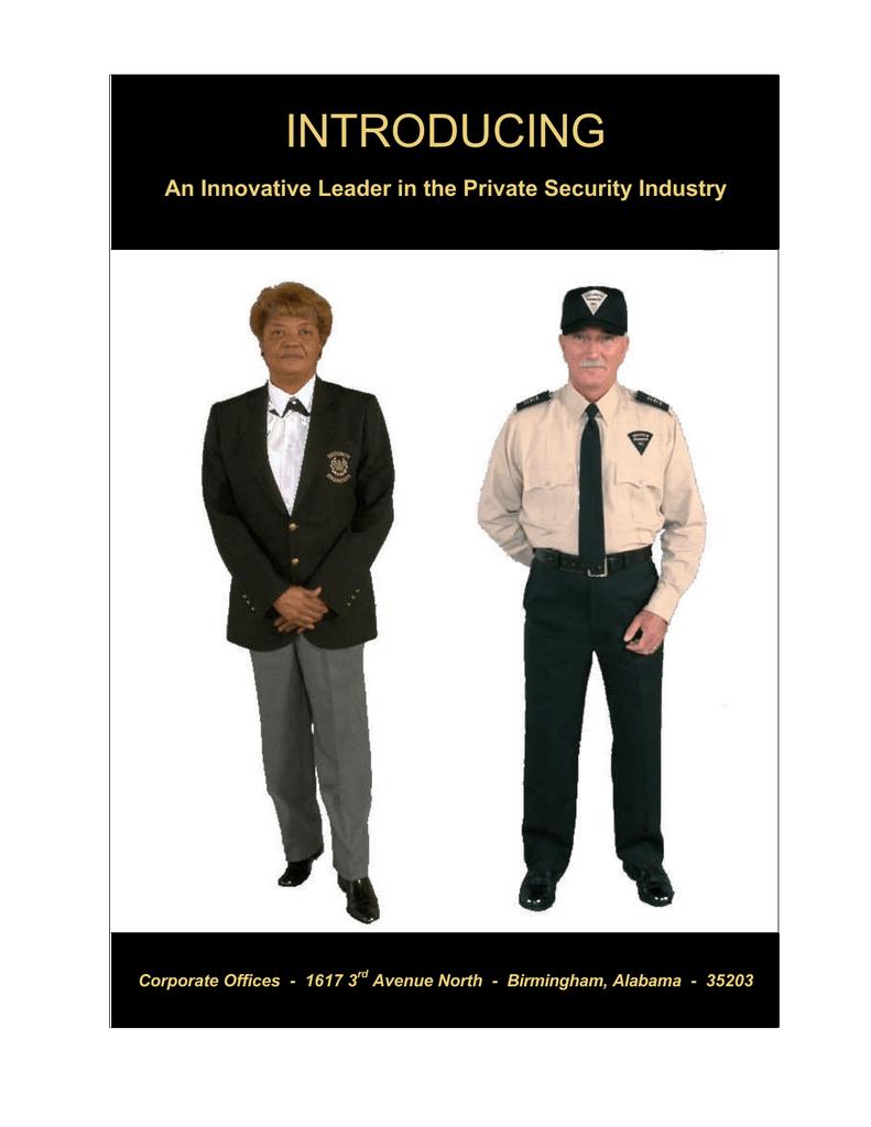 introducing - Security Engineers, Inc