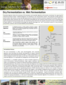 Dry Fermentation vs. Wet Fermentation