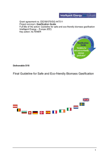 Gasification Guide - Final guideline for safe and eco friendly biomass