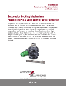 Suspension Locking Mechanism: Attachment Pin and Lock Body for
