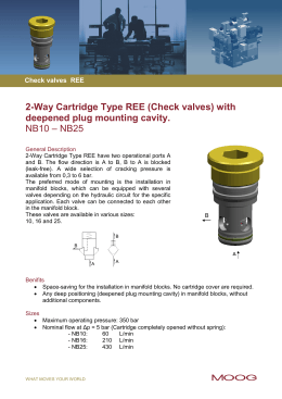 2-Way Cartridge Type REE (Check valves) with deepened plug