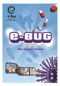Key Stage 3 / Science - e-Bug