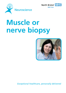 Muscle or nerve biopsy - North Bristol NHS Trust