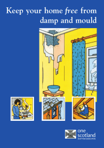 Keep your home free from damp and mould