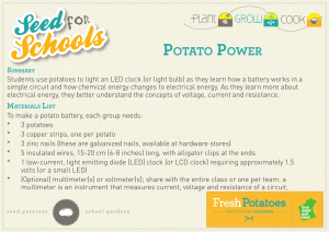 Potato Power Experiment