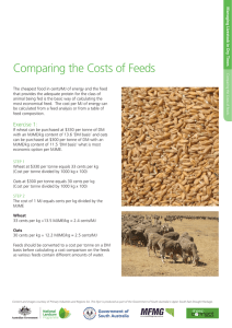 Comparing the Costs of Feeds