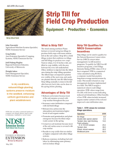 Strip Till for Field Crop Production - NDSU Agriculture