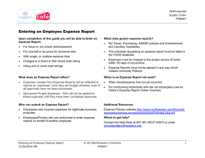Entering an Employee Expense Report