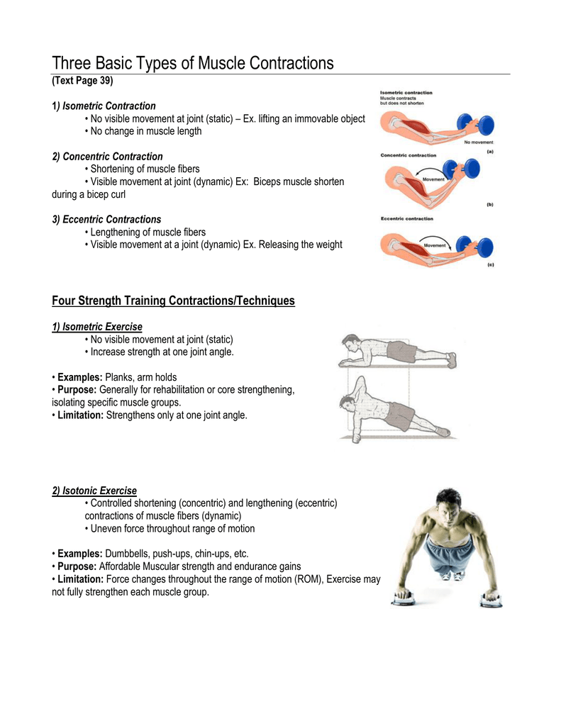 Three Basic Types Of Muscle Contractions