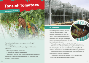Tons of Tomatoes - Literacy Online