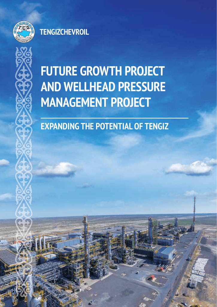 FUTURE GROWTH PROJECT AND WELLHEAD PRESSURE