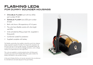 FLASHING LEDs - Bentley Security Projects