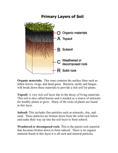 Primary Layers of Soil PDF