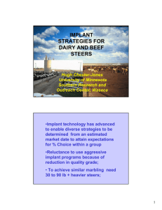 implant strategies for dairy and beef steers
