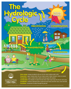 The Hydrologic Cycle Poster