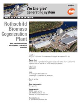 Rothschild Biomass Cogeneration Plant