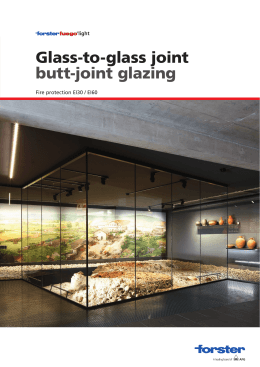 Glass-to-glass joint butt-joint glazing