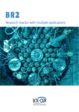 Research reactor with multiple applications
