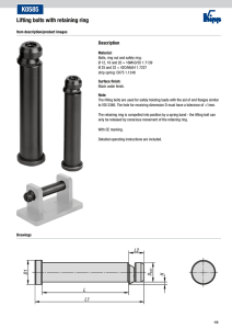 K0585 Lifting bolts with retaining ring