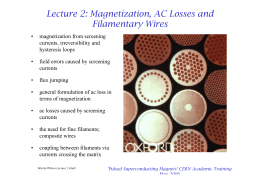 Lecture 2: Magnetization, AC Losses and Filamentary Wires