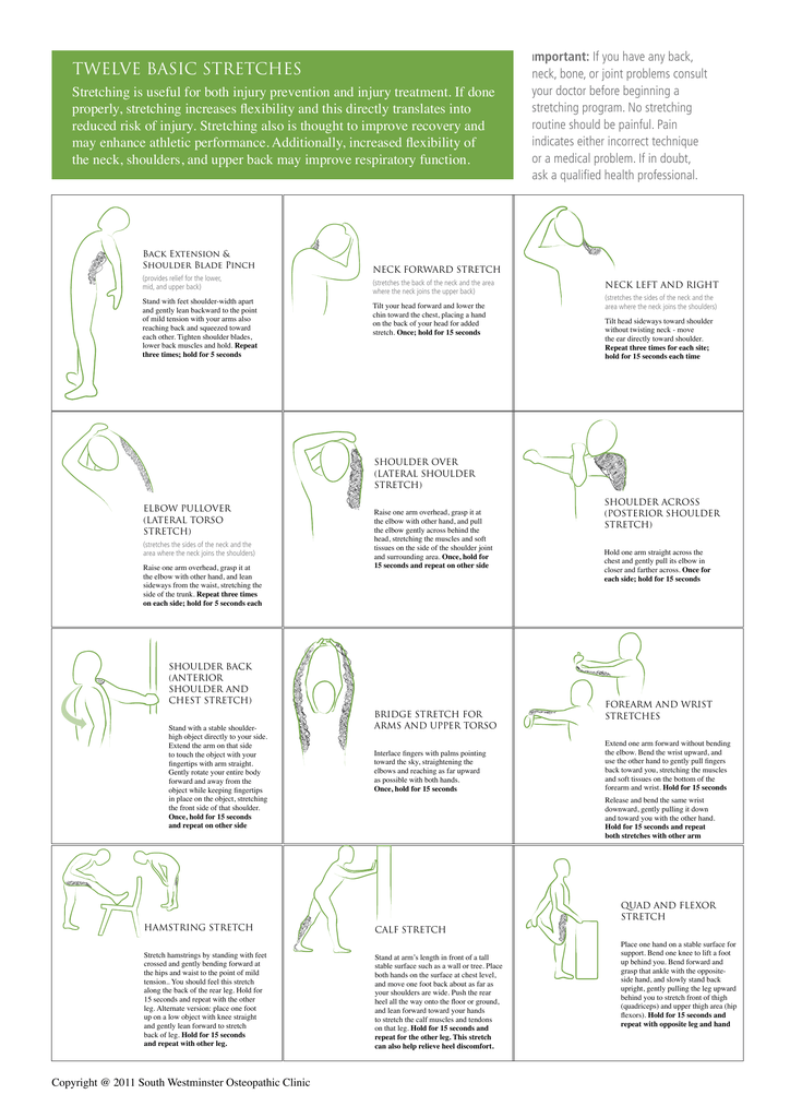 twelve basic stretches - South Westminster Osteopathic Clinic